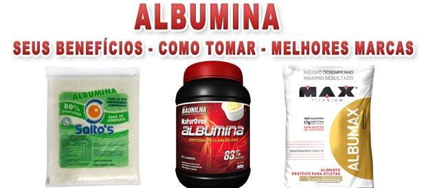 albumina como tomar benefícios melhores marcas engorda