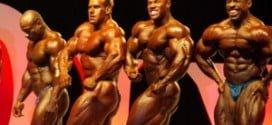 Tudo sobre o Mister Olympia 2012