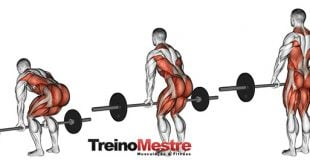 exercicio-levantamento-terra-e-stiff-deadlifts