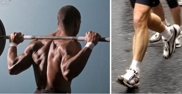 treinamento concorrente aerobicos correr e musculacao