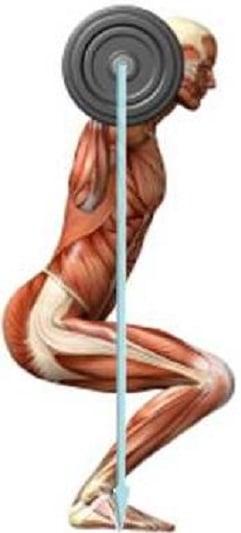 Agachamento correto e as lesoes