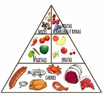 cardapio alimentos dieta paelo paleolítica