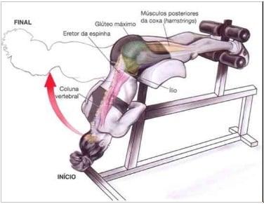 exercicios melhora lombar dores