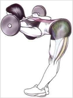 exercicios para lombar postura