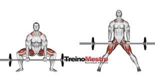 agachamento sumo erros no exercicios e treino de pernas