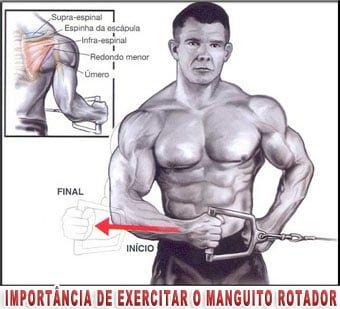 exercicios para manguito rotador