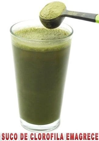 suco de clorofila para emagrecer