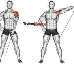 Tenha ombros mais fortes e definidos com essas dicas valiosas