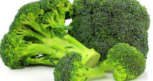brocolis beneficios e receita