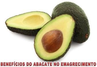 benefícios do abacate no emagrecimento e hipertrofia