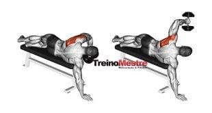 ordem correta exercicios treino musculacao
