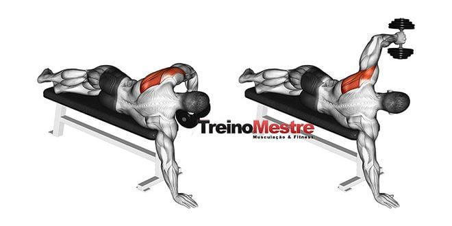 Ordem correta dos exercícios na musculação – Veja o que os estudos apontam