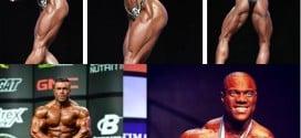 Mr. Olympia 2014 – Classificação final de todas as categorias