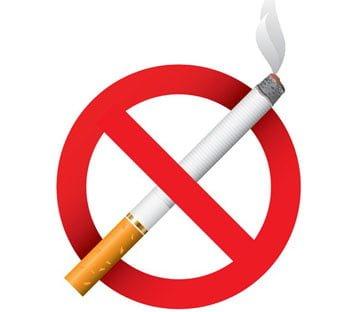 Dieta quando deixado fumando com um organismo