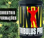 Tribulus terrestris: Para que serve, benefícios e efeitos colaterais