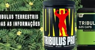 tribulus terrestris para que serve efeitos colaterais nas mulheres engorda