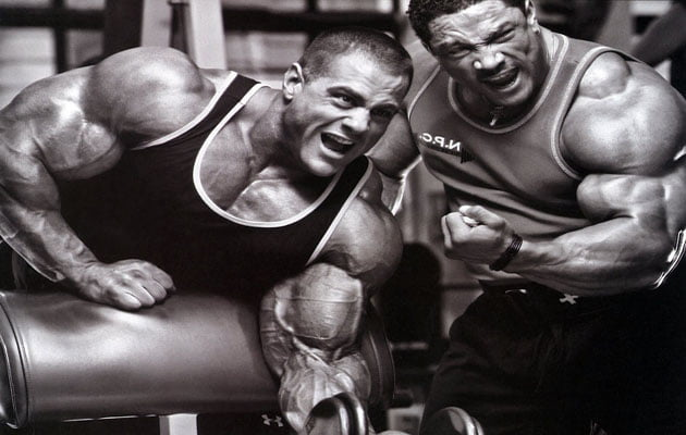 treino dos fisiculturistas exercicios series copiar