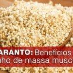 Amaranto: Todos os seus benefícios, inclusive no ganho de massa muscular