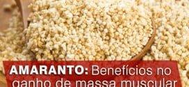 amaranto beneficios no ganho de massa muscular consumir