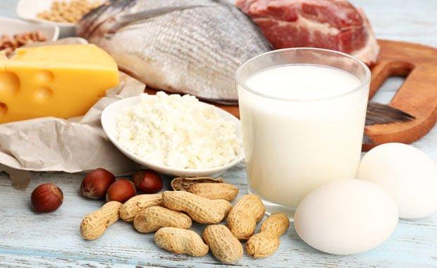 nova dieta das proteínas