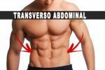 Transverso abdominal, você fortalece ele?
