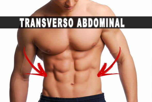 transverso abdominal treino
