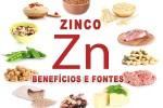 Zinco – Seus benefícios para saúde e fontes alimentares desse mineral