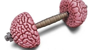Brain dumbbells. Intellectual trainig illustration