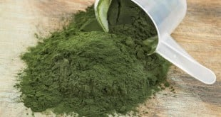 Spirulina para que serve beneficios emagrece