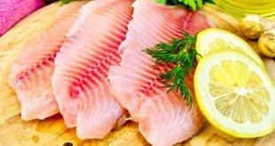 beneficios da tilapia e receitas como preparar