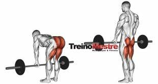 exercicio-stiff