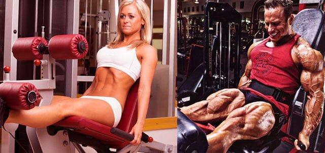Cadeira extensora - Músculos envolvidos, benefícios e dicas
