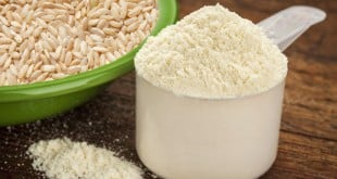 proteina integral isolada do arroz beneficios rice protein