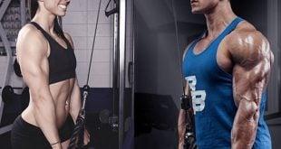 treino para triceps