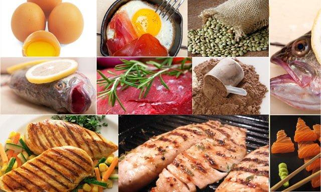 alimentos ricos em proteínas para ganhar massa muscular