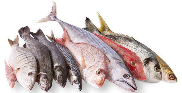 carne de peixe para dieta hipertrofia