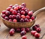 Cranberry: Usada no tratamento de infecções urinárias, essa fruta ainda possui inúmeros benefícios