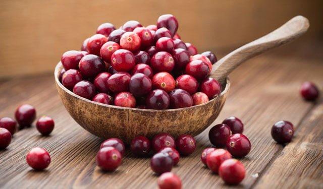 cranberry ou arando benefícios