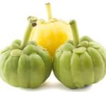 A Garcínia cambogia tem efeitos positivos no emagrecimento e ainda é rica em vitamina C