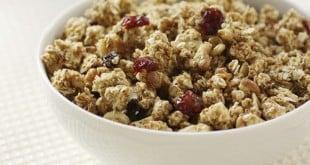 granola beneficios engorda ou emagrece