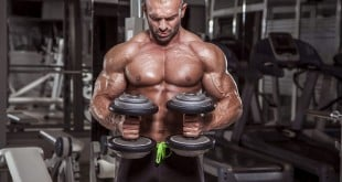 lateralidade na musculacao