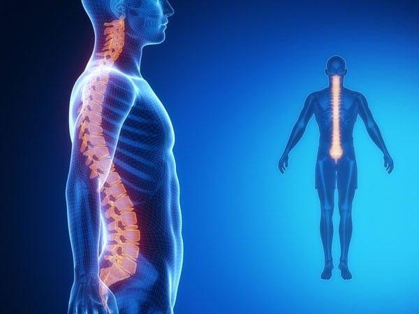 musculação aplicada a melhora dos desvios posturais