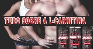 l-carnitina para que serve efeitos colaterais emagrece