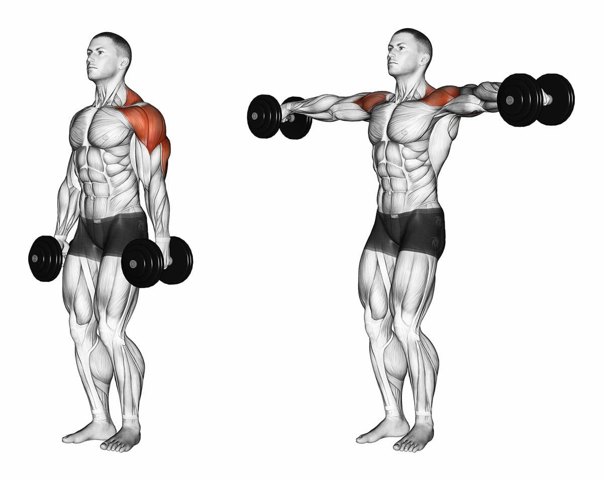 Ombros: como melhorar os resultados de seu treino de