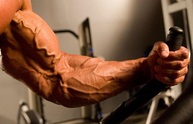 pump muscular