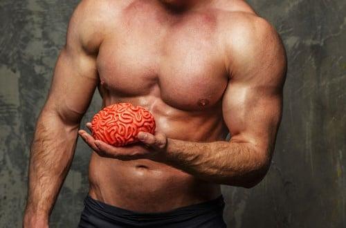 Adaptação neural na musculação - No Brain no Gain