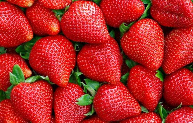 Morango: benefícios e vitaminas da fruta