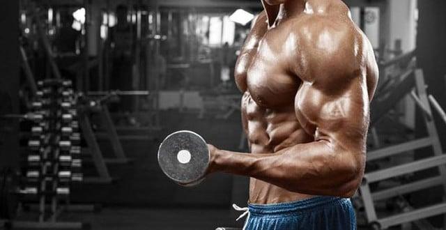 concentrar no musculo