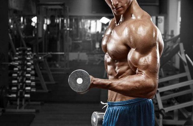 Concentrar no músculo