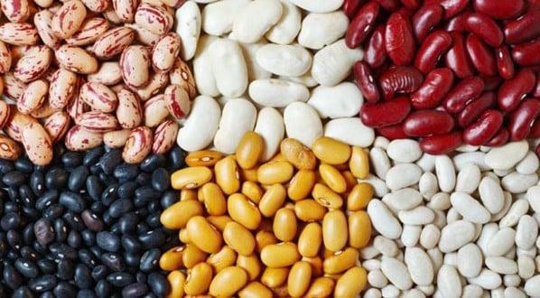 Conheça todos os benefícios do feijão e se ele engorda ou emagrece